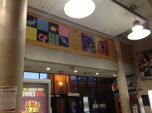 University Food Court
